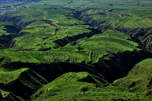 绿色发展引领煤炭业下一个黄金十年