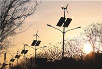 中国低碳能源发展蹄疾步稳