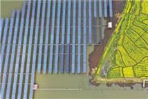 衡阳衡东县把清洁能源和扶贫结合