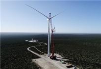 """中国""""大风车""""助力阿根廷能源升级"""